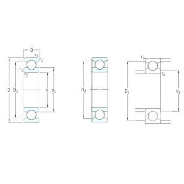 9 mm x 20 mm x 6 mm  SKF 619/9 радиальные шарикоподшипники